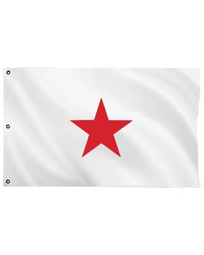 Georgia Secession printed polyester flag