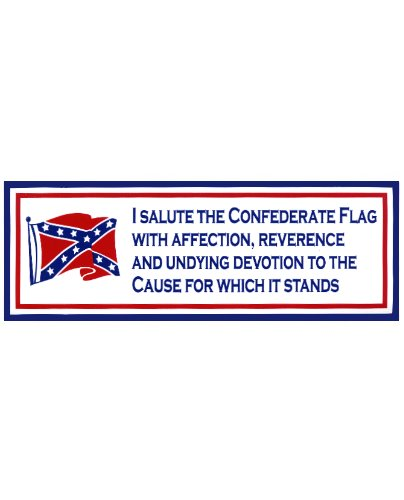 I Salute the Confederate Flag bumper sticker