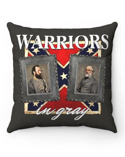 Warriors in Gray throw pillow